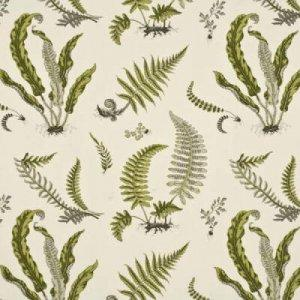 GP & J BAKER FERNS COTTON FABRIC