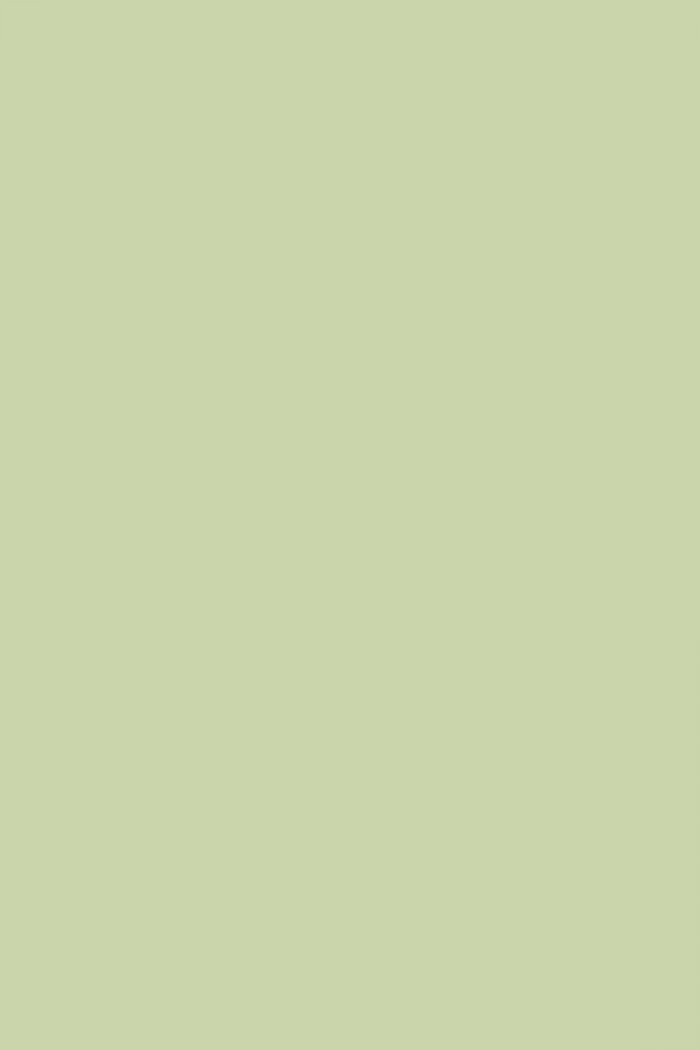 Farrow And Ball Cooking Apple Green No 32 Paint