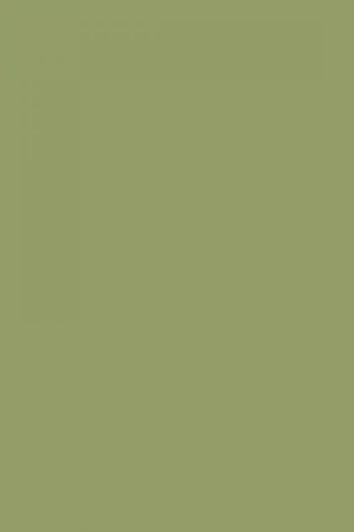 Olive Green Wall Paint American Hwy