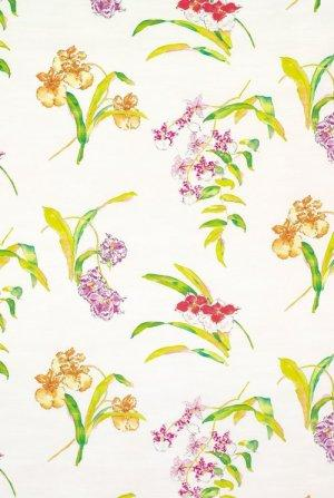 Nina Campbell Perroquet Orchis Fabric