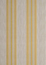 GP & J BAKER SWAISLAND STRIPE FABRIC