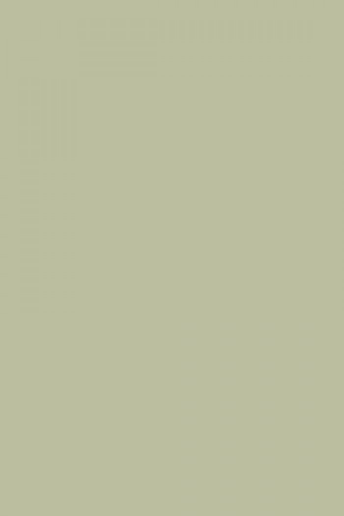 Farrow And Ball Vert De Terre No 234 Paint Alexander