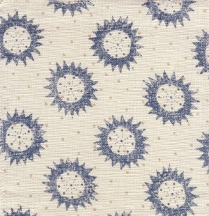 Borderline Star Fabric